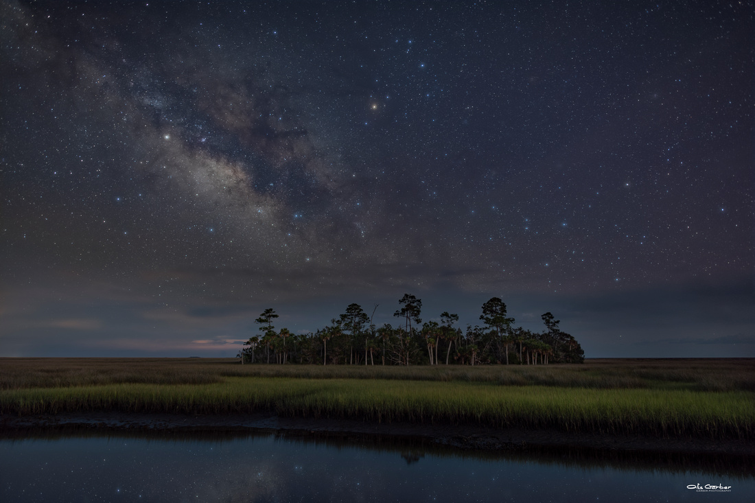 Salt Marsh Milky Way