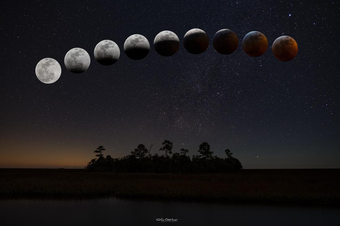 Blood Wolf Eclipse